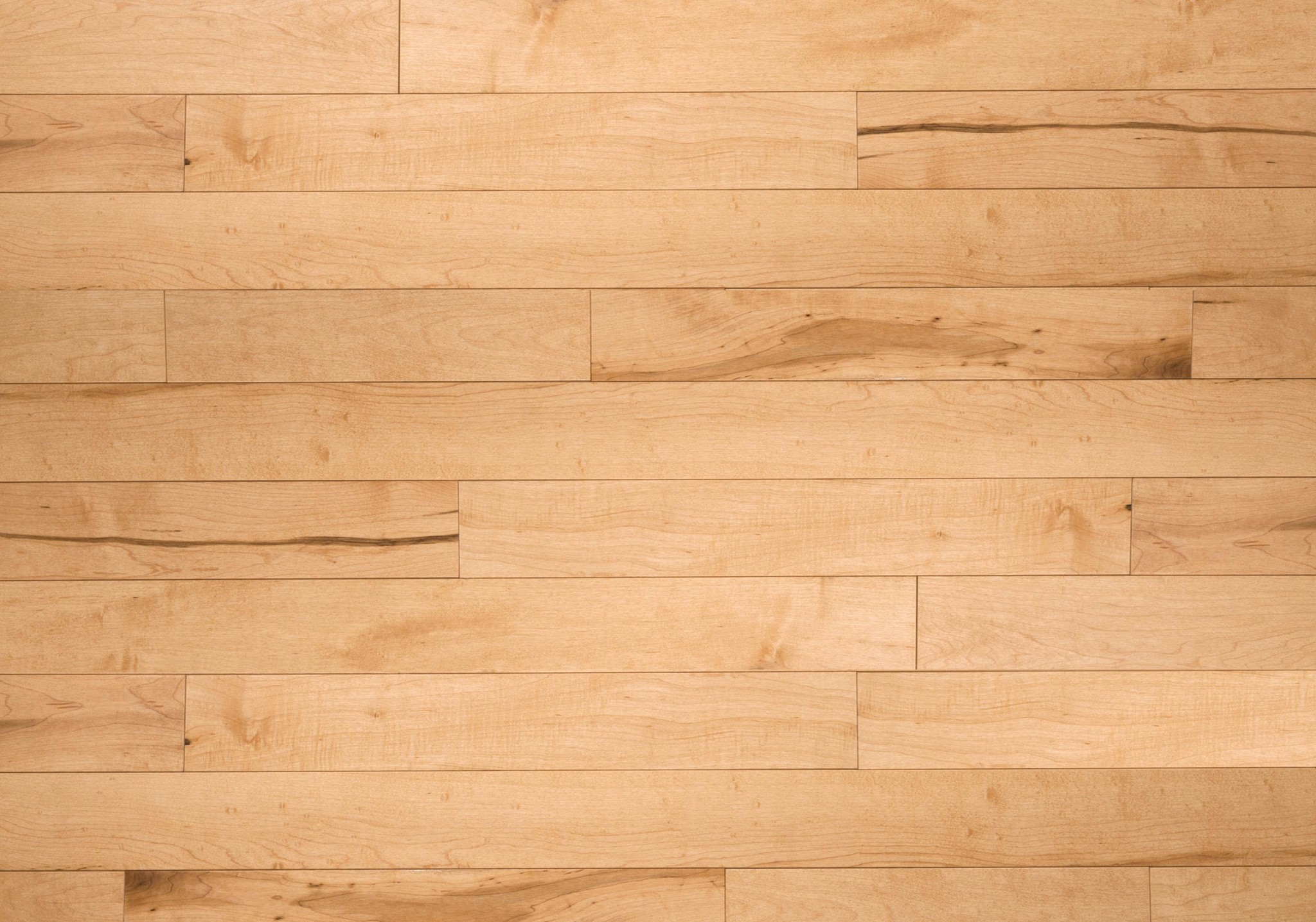 Calypso ambiance hard maple pacific exclusive for Maple flooring