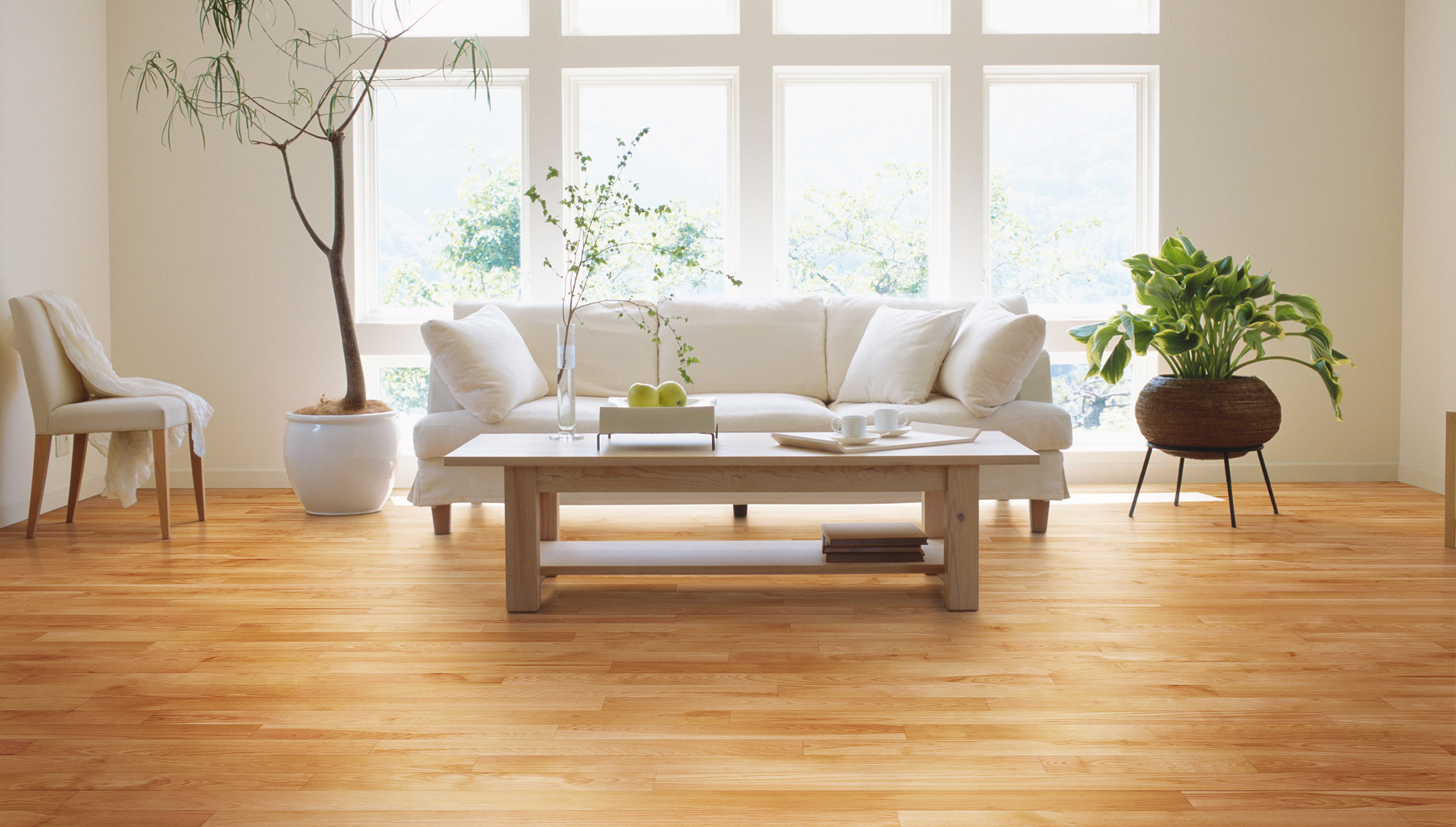 Natural, Ambiance, Yellow Birch, Red - Lauzon Hardwood Flooring