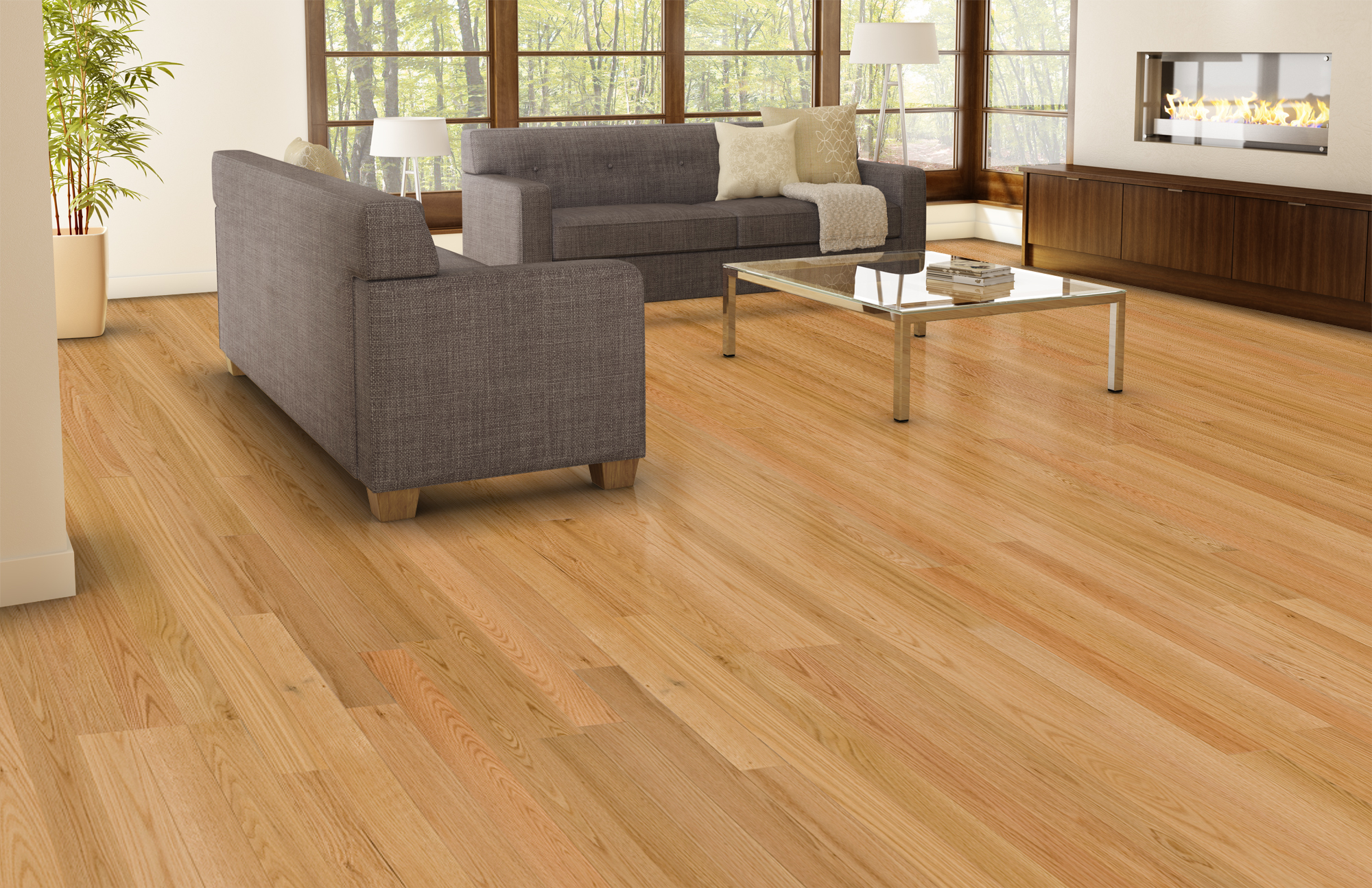 Natural ambiance red oak select better lauzon Carpet or wooden floor in living room