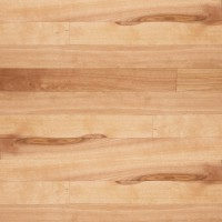 Yellow Birch Hardwood Flooring Natural Amaretto Ambiance Lauzon