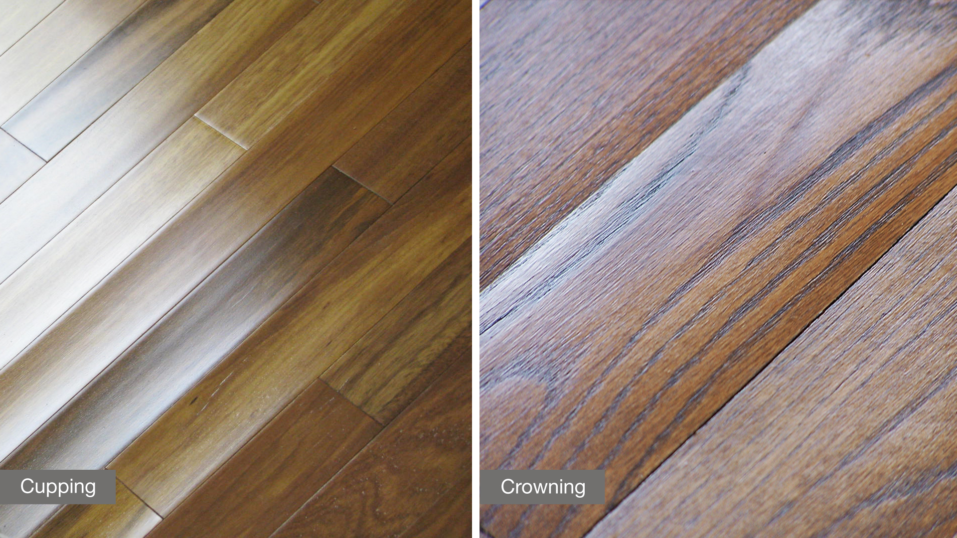 6 ways humidity can affect your hardwood floor lauzon for Hardwood floors cupping